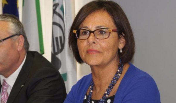 Anna Casini, le Marche e le politiche del lavoro